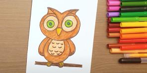 How to draw an owl: 21 easy ways