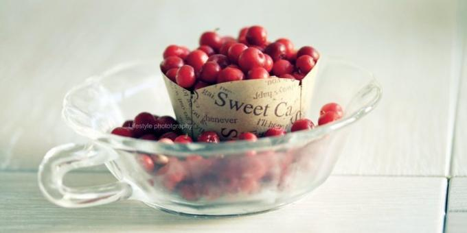 Useful fruit and berries: cranberries