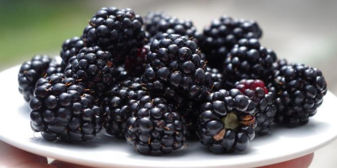 Useful fruit and berries: blackberries