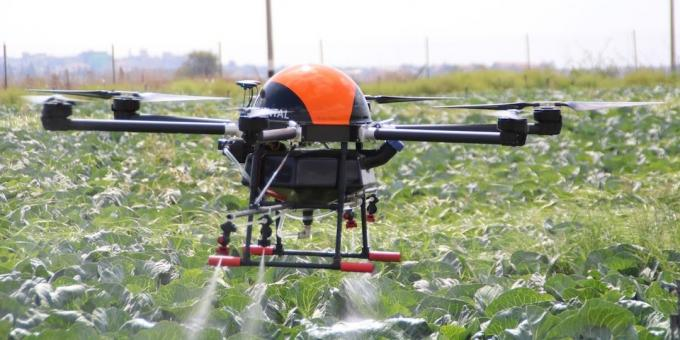 Drone helps grow plants